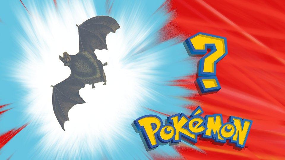 Who Dis Pokemon image