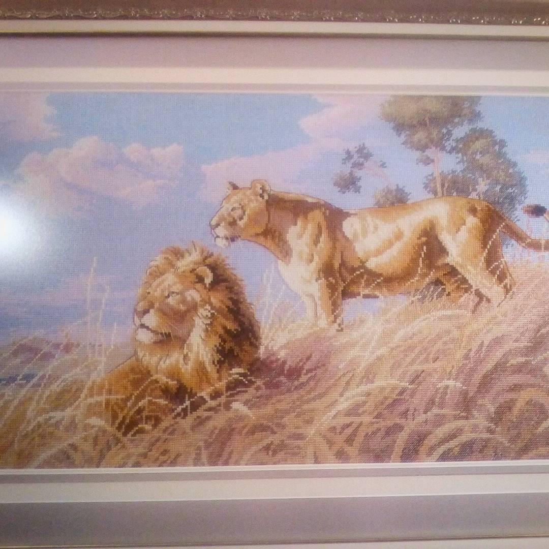 схема вышивки крестом саванна лев