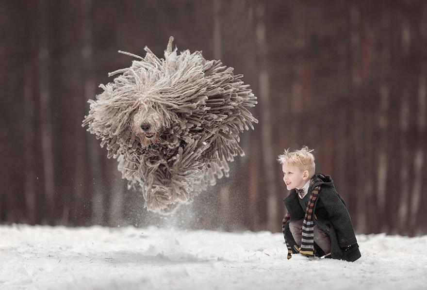 モップ犬(コモンドール)と少年がはしゃぐ写真がまるでファンタジーの世界 - Togetter