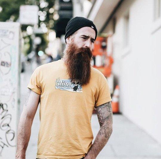 Стиль и дизайн бороды Стильные бородки