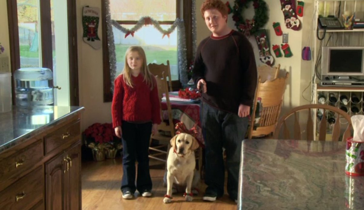 The Dog Who Saved Christmas.Discovery Family On Twitter Who Wouldn T Want A Dog That