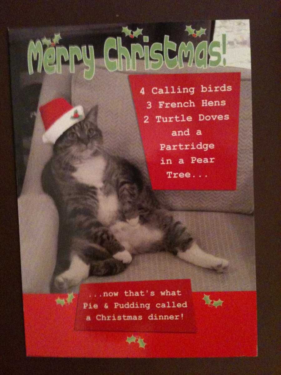This was one of my cards! It still makes me smile from last year #XmasYog @SquirtTheCat https://t.co/h9cRjUI2Dw
