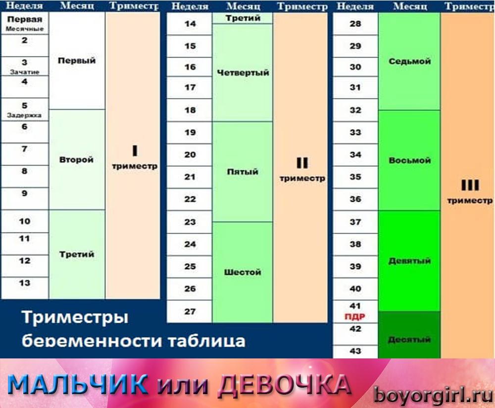 беременность по неделям рассчитать пол ребенка по таблице