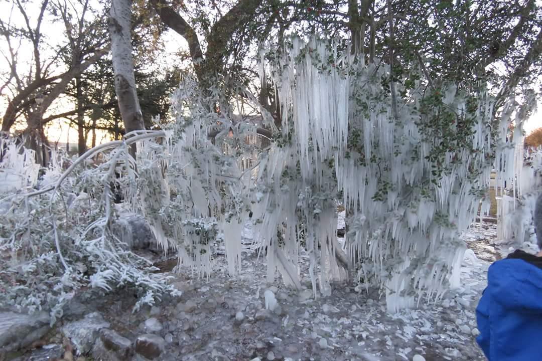 TWU left their sprinklers on last night and it is a winter wonderland! https://t.co/yMoXFVrUJY