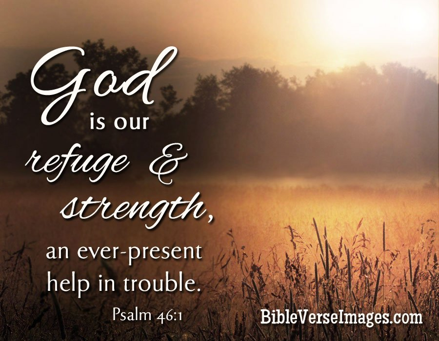 Find a Bible verse by searching for a word passage or topic