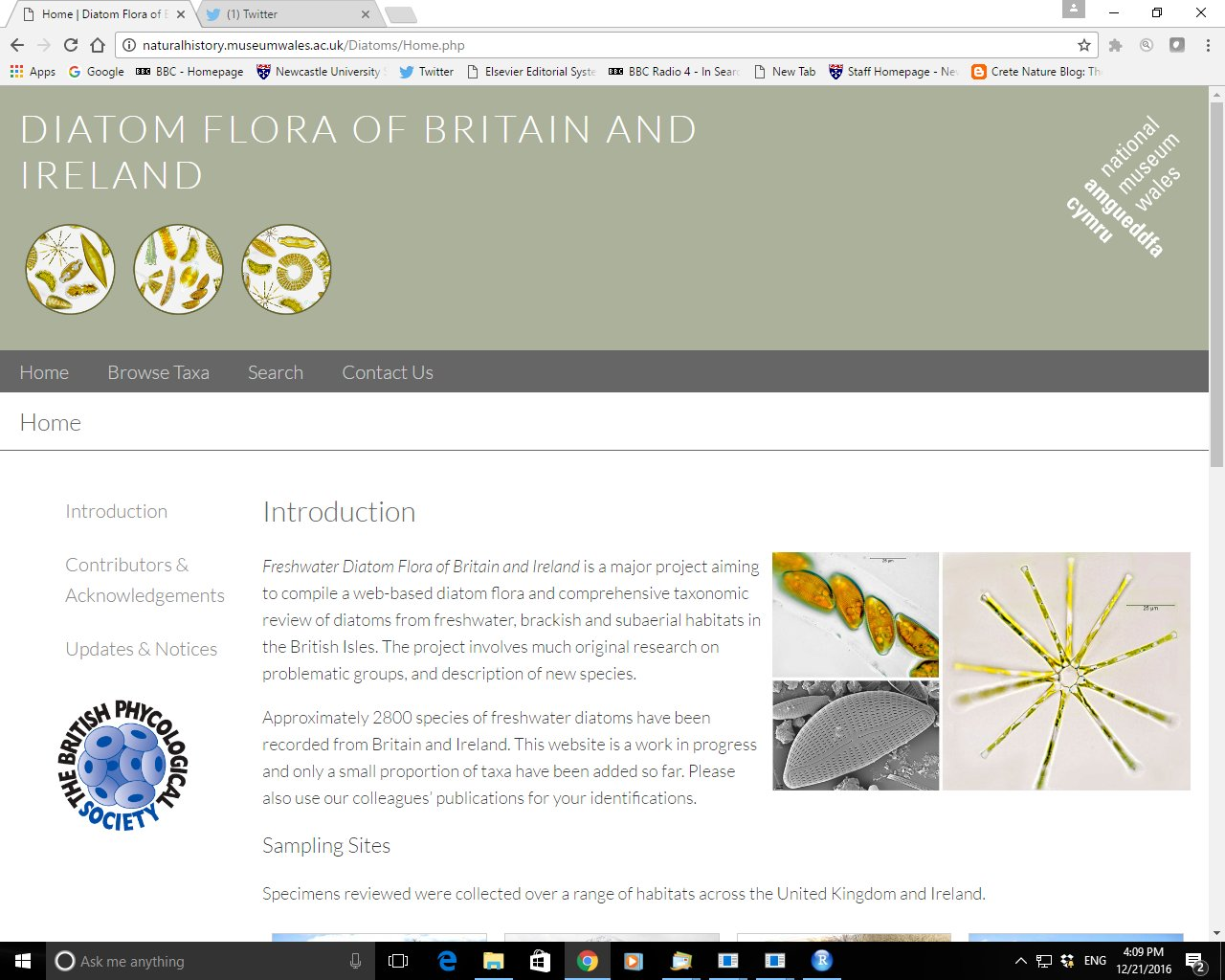 Thumbnail for Freshwater Diatom Flora of Britain and Ireland website launched