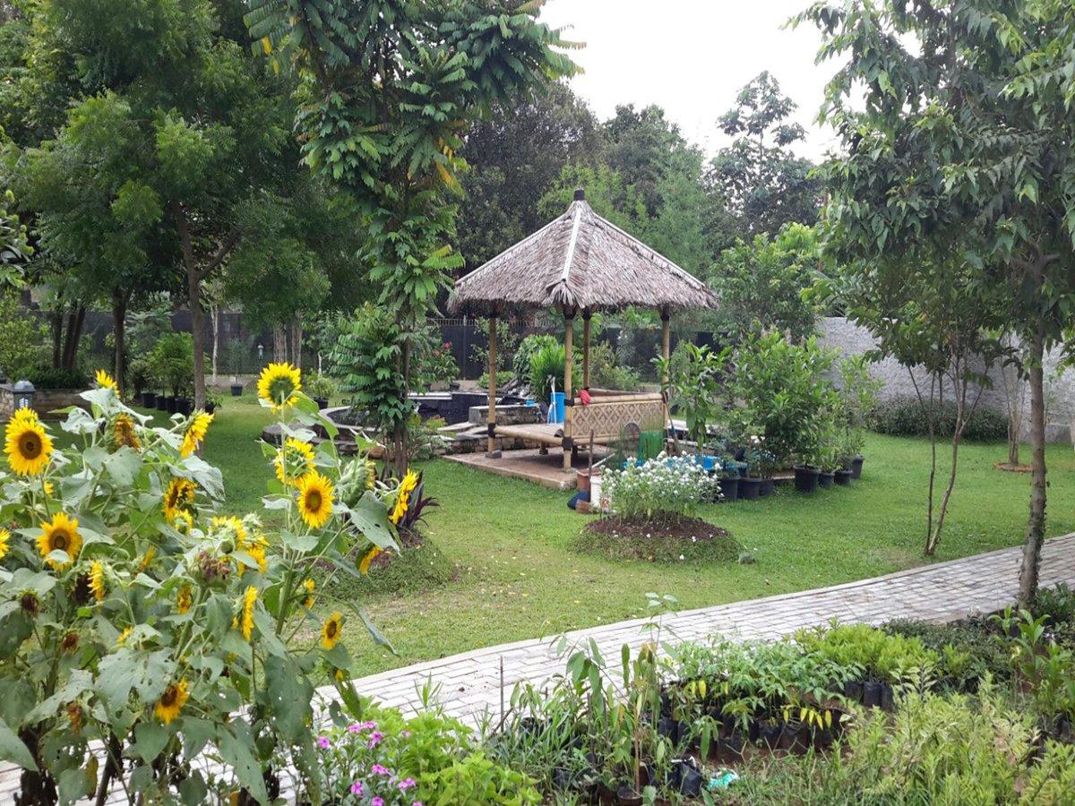 Herbal Insani On Twitter Kebun Dan Saung Taman Herbal Insani