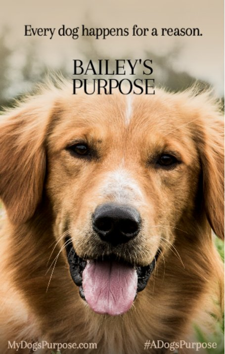 How To Make Ur Dog A Service Dog