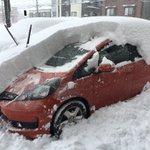 札幌市の24時間での降雪量を可視化してみた結果…やべぇ!