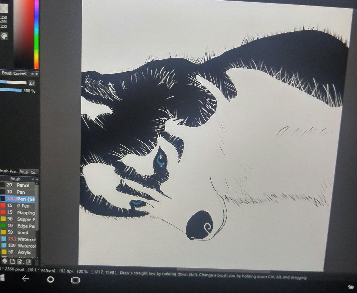 Anime Husky Dog