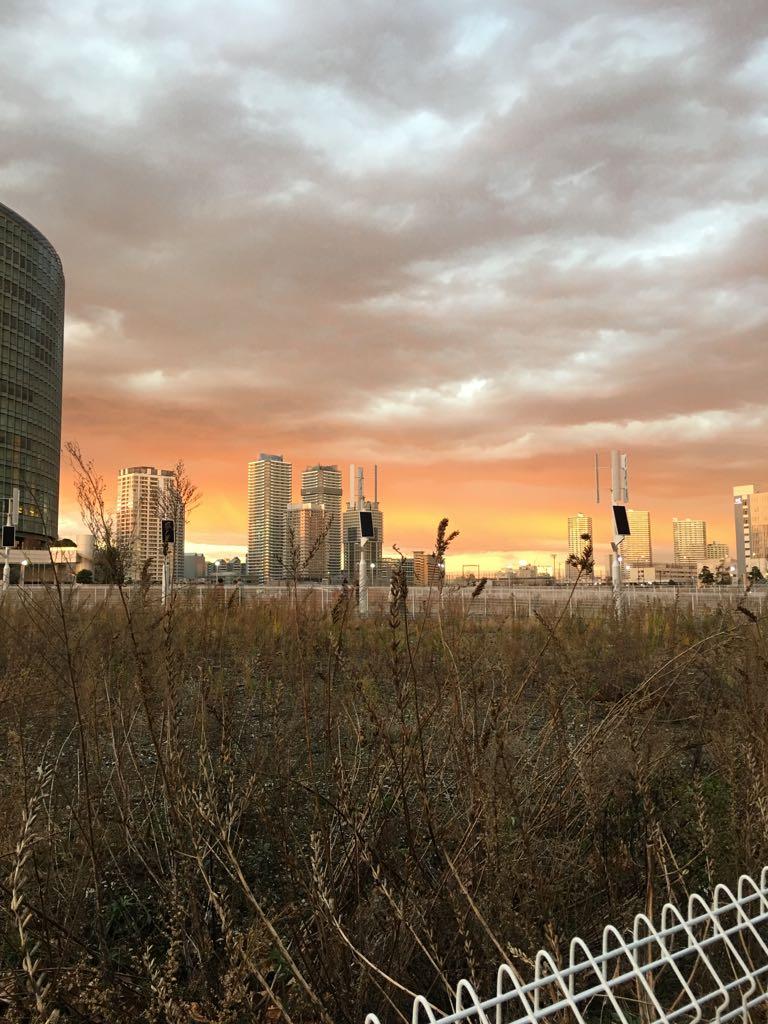 東の雲に西日が反射して不思議な景色 https://t.co/giHy85IHr7