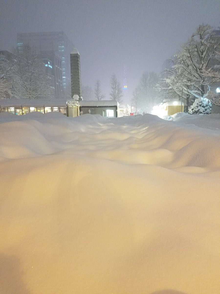 札幌大通公園のイルミネーション完全終了のお知らせ!
