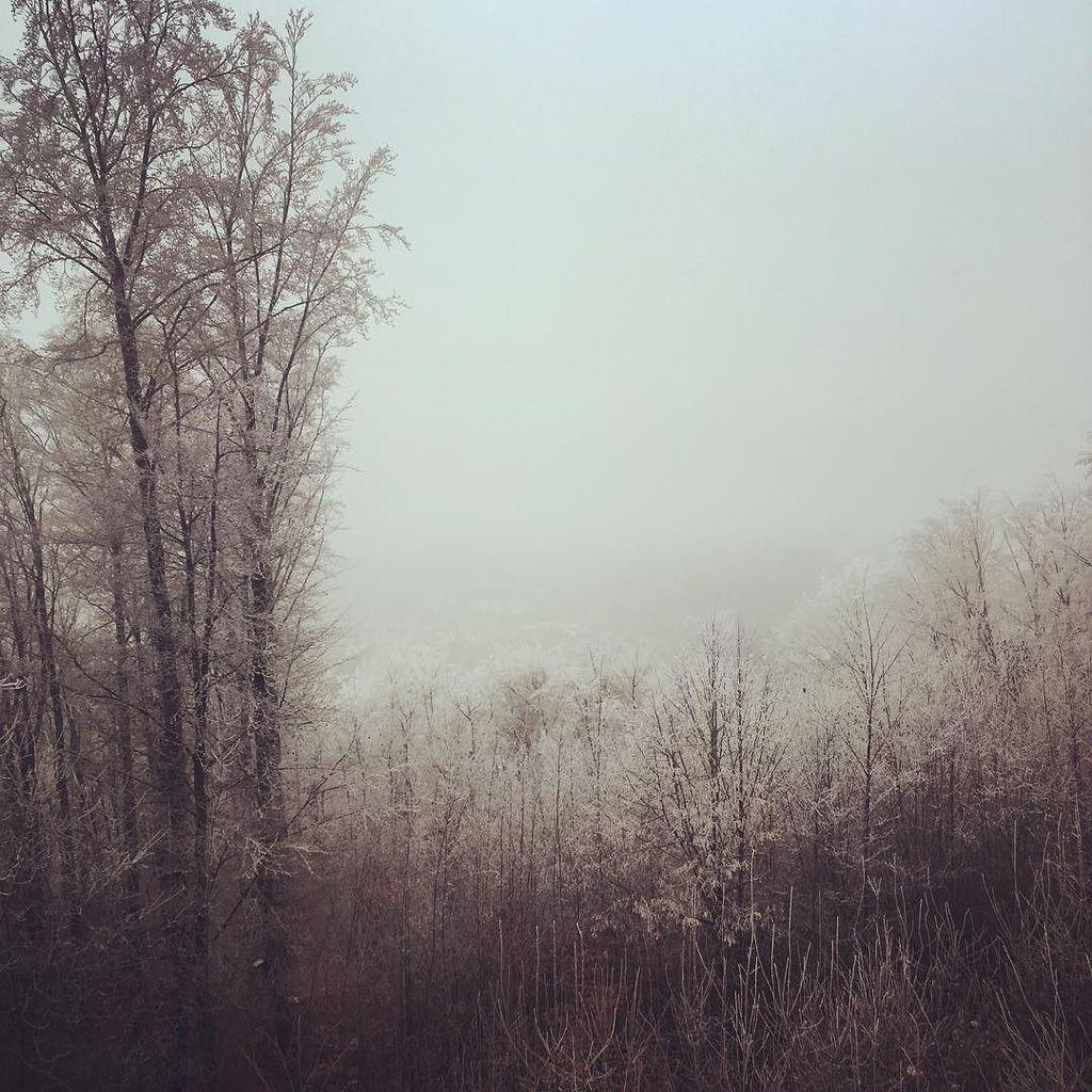 The fog rolling over old town Sulzbach. #seenonmyrun @stravarun https://t.co/sI5dUV97Dh https://t.co/BgOn5XH41C