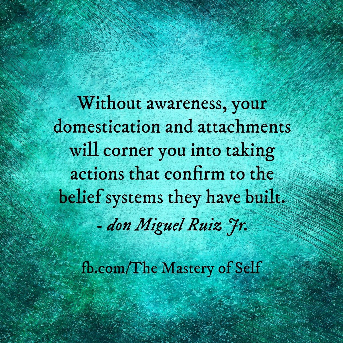 Don Miguel Ruiz Jr On Twitter A Quote From The Mastery Of Self By