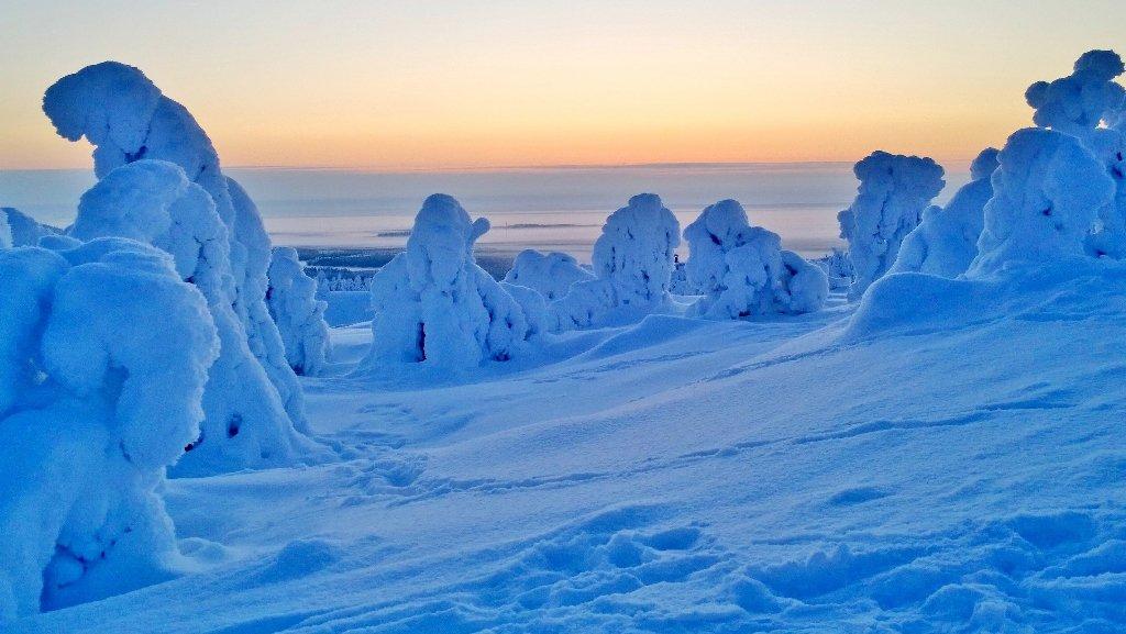 enter finland eservices