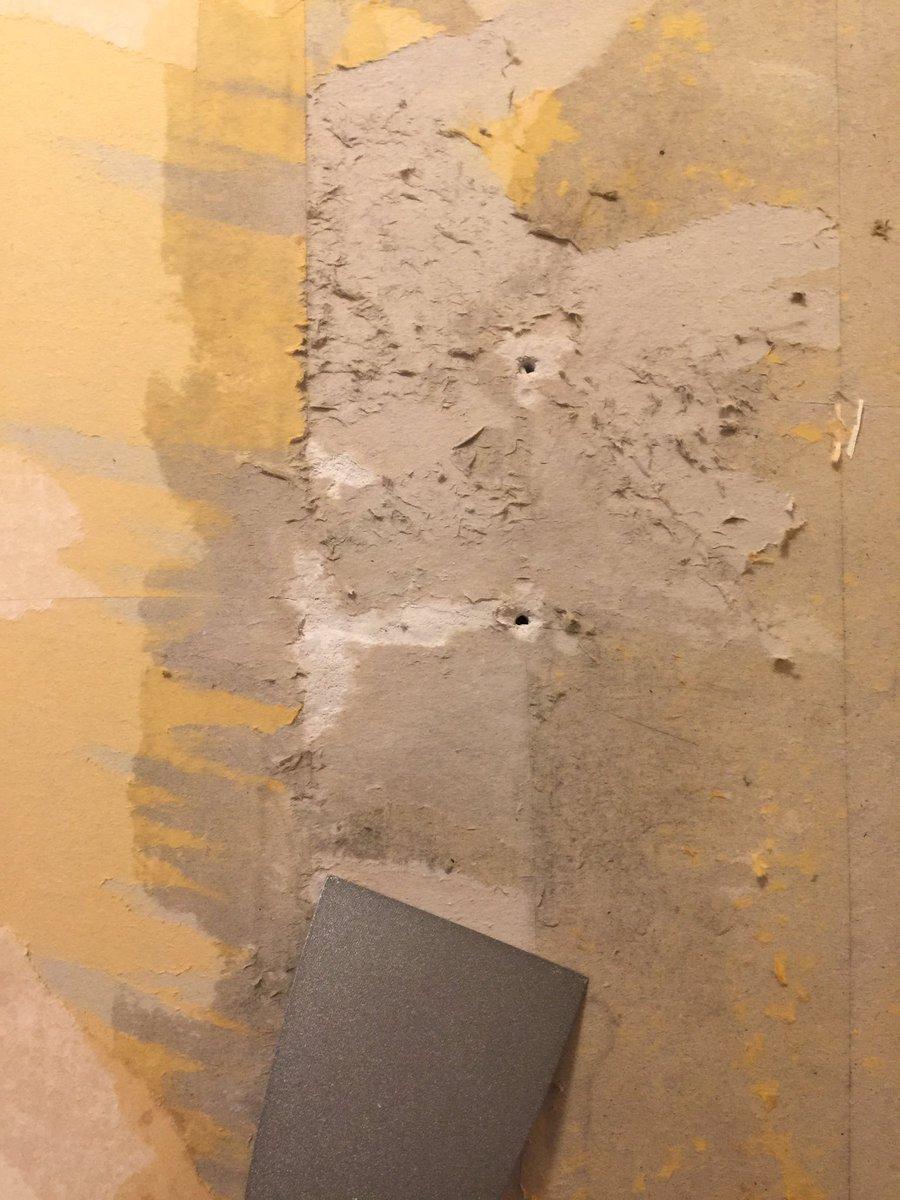 ট ইট র トミー 洗面室だけ珪藻土を塗ろうと まずは壁紙