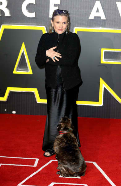 #Carrie #Fisher #Health #Update: How Is She?!?  http:// bit.ly/2hgsphO  &nbsp;  <br>http://pic.twitter.com/03HhdXyc2N
