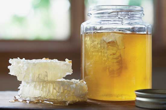 Household Uses for Honey — Green Living — Mother Earth Living