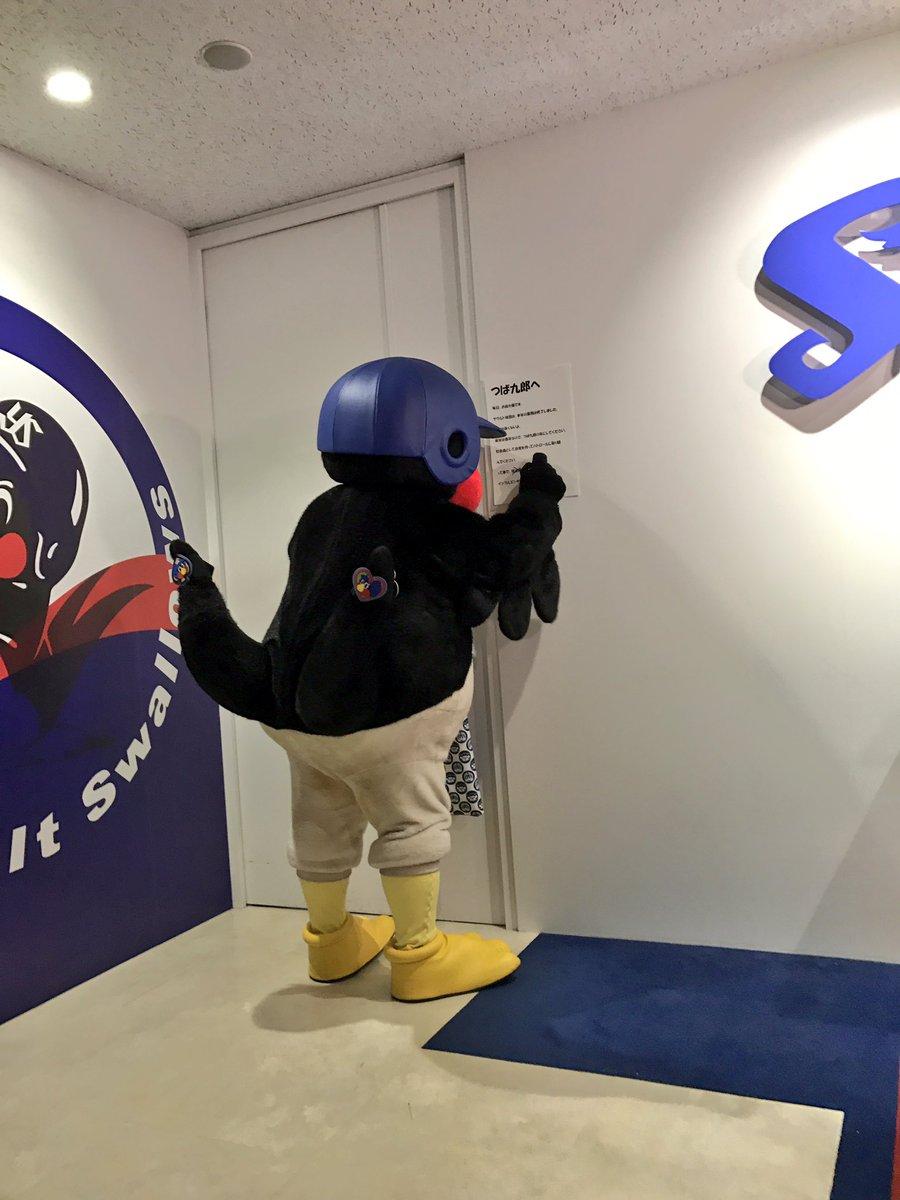 いよいよつば九郎が契約更改!!と思いきや……なんと3時間もの遅刻で、中には入れてもらえず。。しかしせっかくなので来年の抱負を言ってもらいました! #つば九郎 #swallows