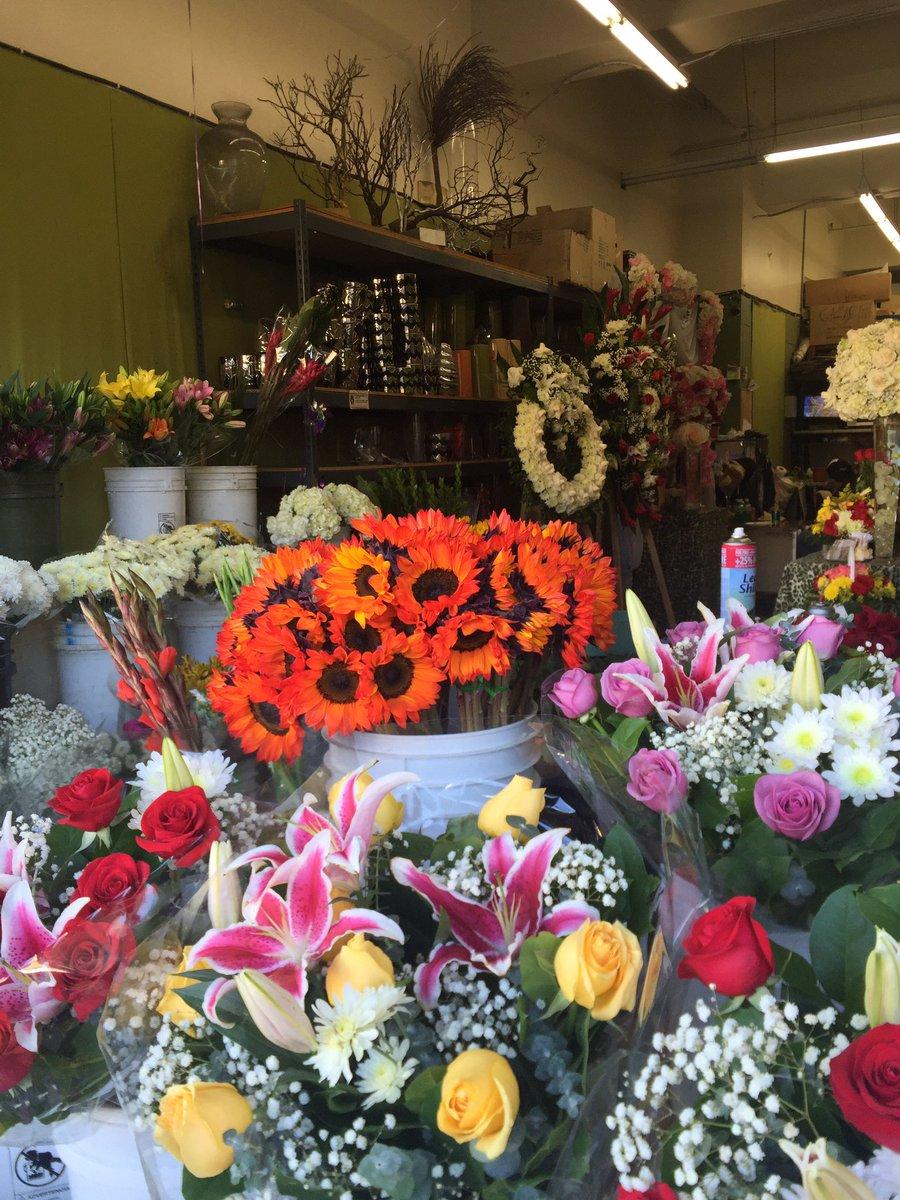 El Espiritu Joto On Twitter I Love Coming To The Flowers District