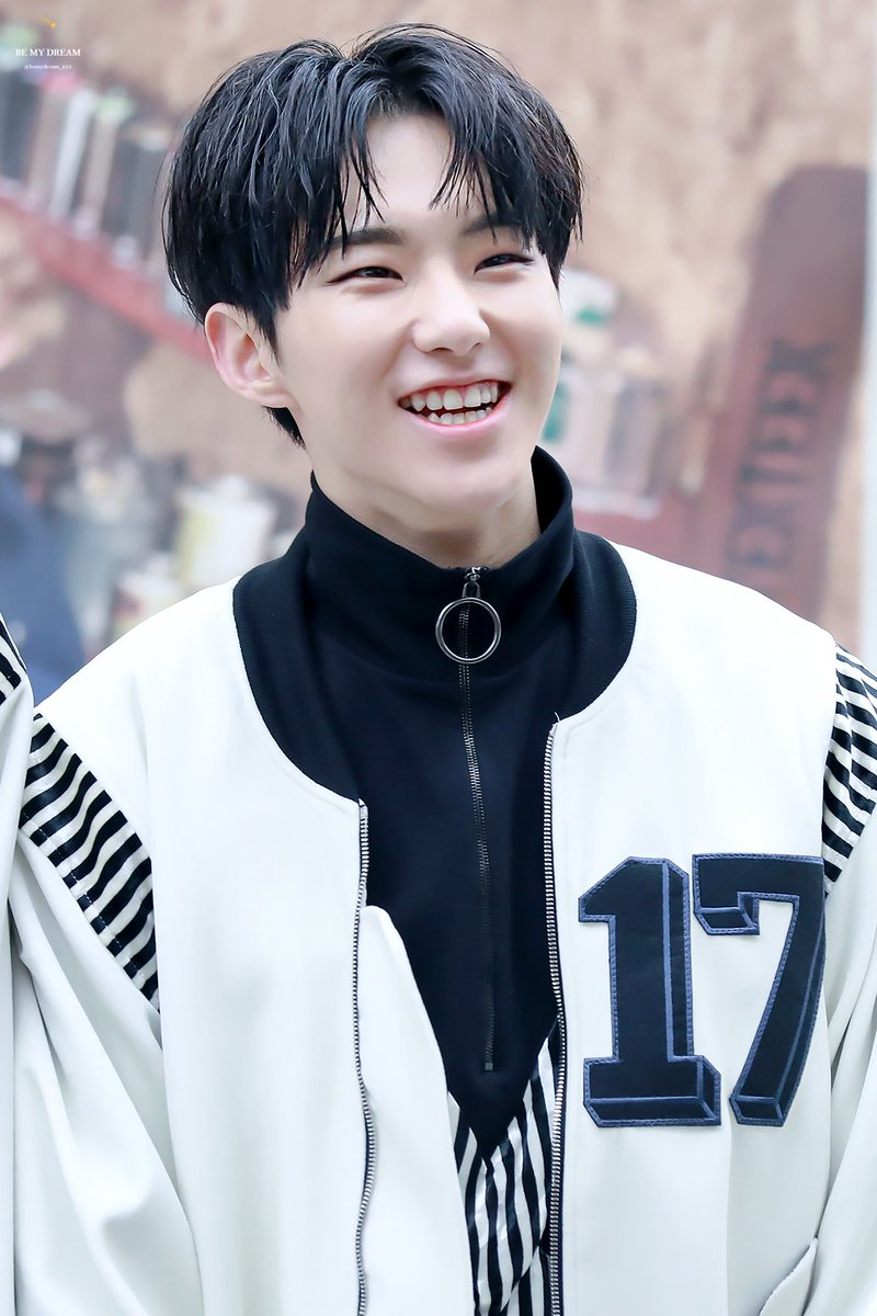 Hoshi S Smile On Twitter 161218 Be My Dream