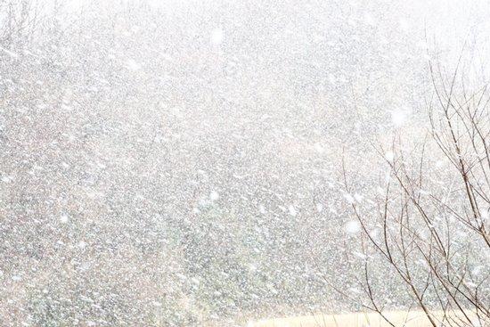 「雪風巻(ゆきしまき)」 強い風が吹き、降る雪を吹雪に変えます。 「風巻(しまき)」とは烈しく吹く風のことをいいます。 あたり一面を白く染める様子は、少し恐ろしくも美しい光景です。 #暦生活 #暦 #季節 #冬 #雪 #雪風巻