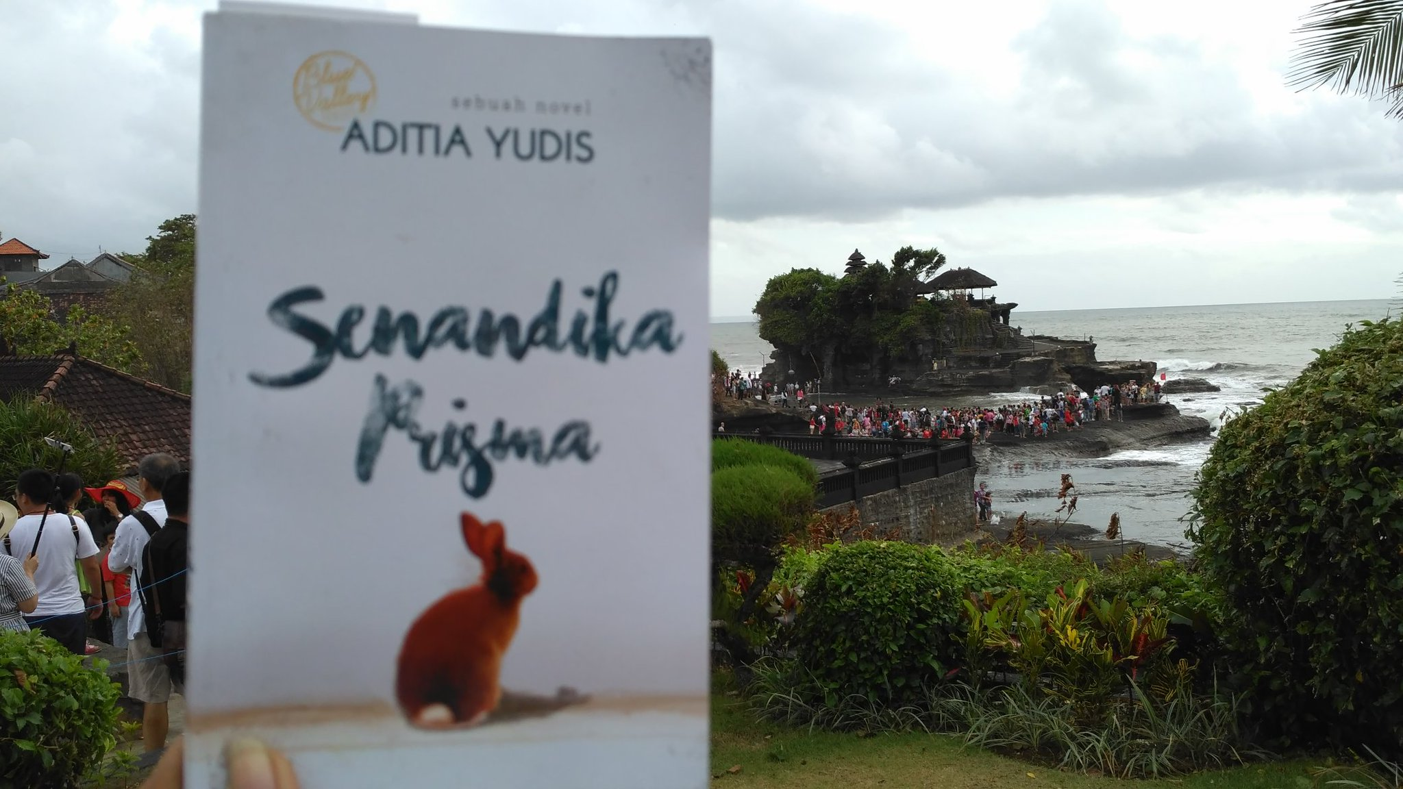 Review Novel Senandika Prisma