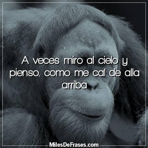 Frases En Imágenes On Twitter A Veces Miro Al Cielo Y