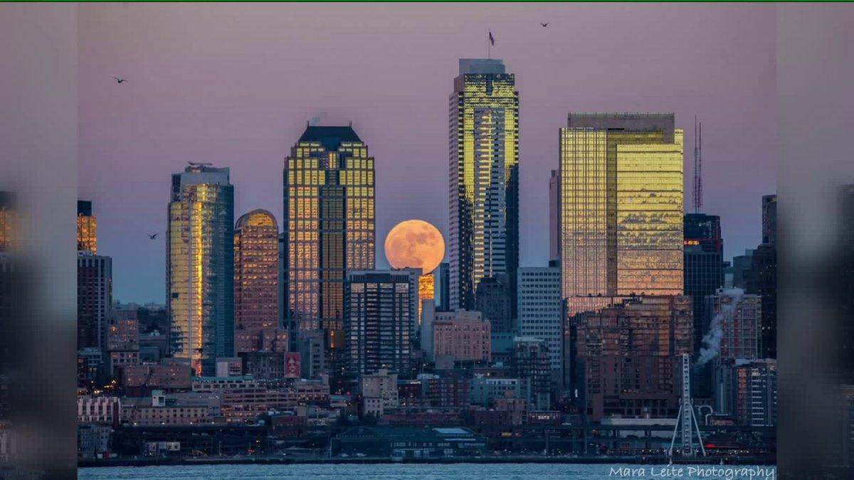 #WolfMoon hiding behind the #Seattle skyline.  (Photo: Mara Leite)  #Q13FOX