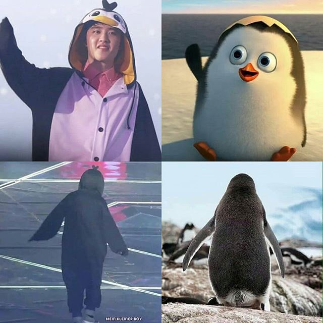 HappyBirthday to the soft,fluffy and squishy penguin who love SehunA savage 5y/o kid with heart shaped mouth#HappyKyungsooDay #경수야생일축하해<br>http://pic.twitter.com/NaJIRE2y10