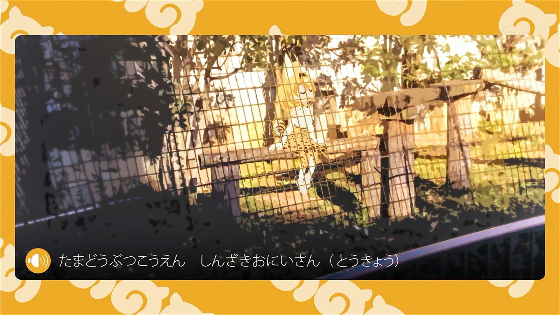 謎の解説パート #tvtokyo #けもフレ https://t.co/N1OuV4cf66