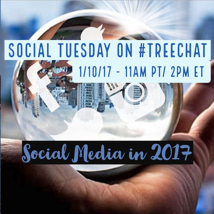Thumbnail for 1.10.17 #treechat 2016 Social Strategy in Review