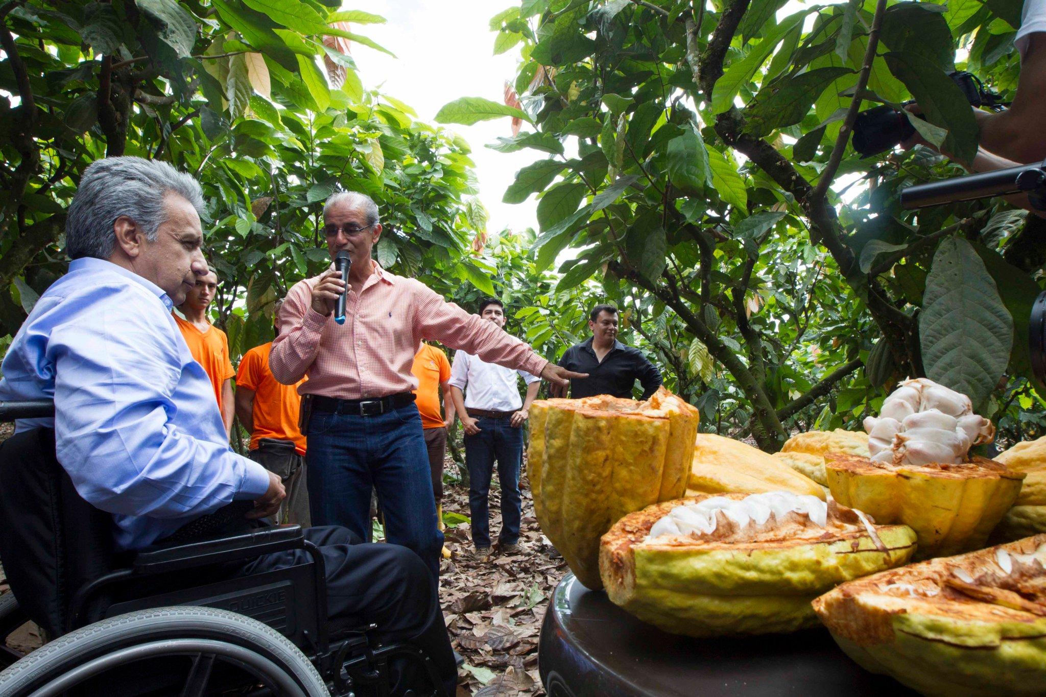 Qué orgullo ver cómo familia Cedeño impulsó su negocio y ser primeros en obtener permiso de uso de Denominación de Origen Cacao Arriba. 1/5 https://t.co/koGNqUajag