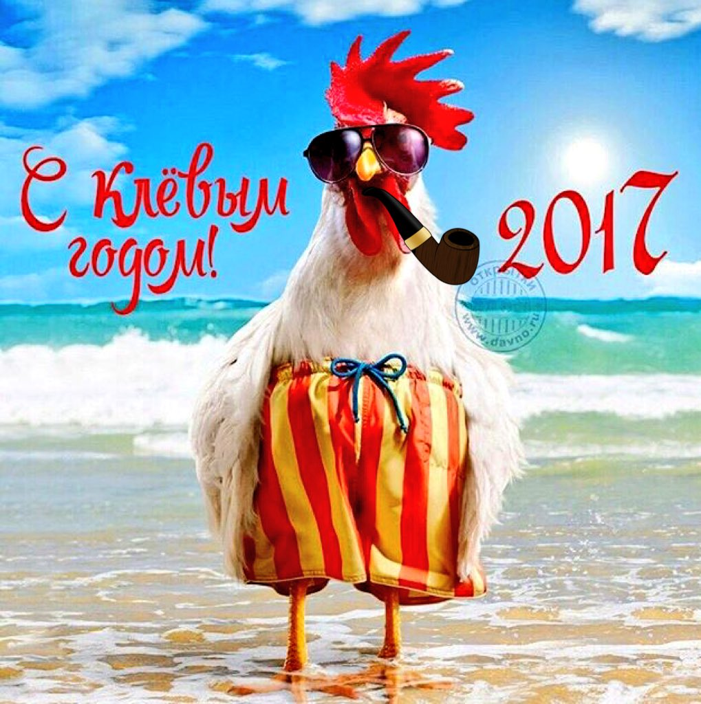 Картинка прикольная с новым 2017 годом, смешные девушки бровями