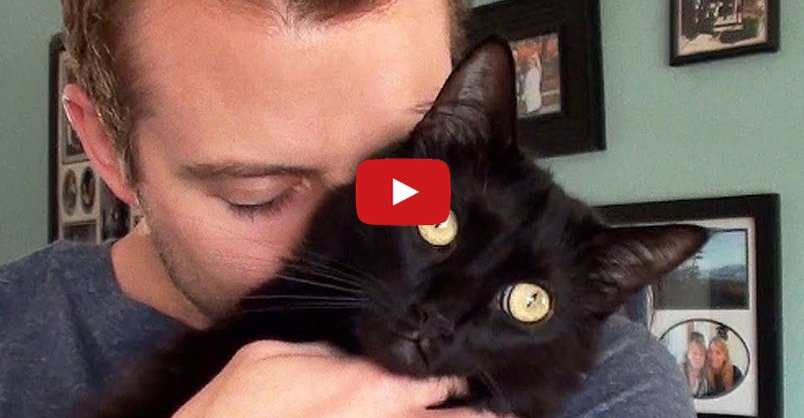 I'm Proud To Be a Cat Man! CLICK to watch >