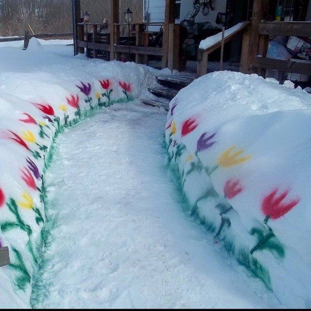 #WhenSpringArrives I will plant flowers but until then this will have to do. <br>http://pic.twitter.com/Xon2heqNqW