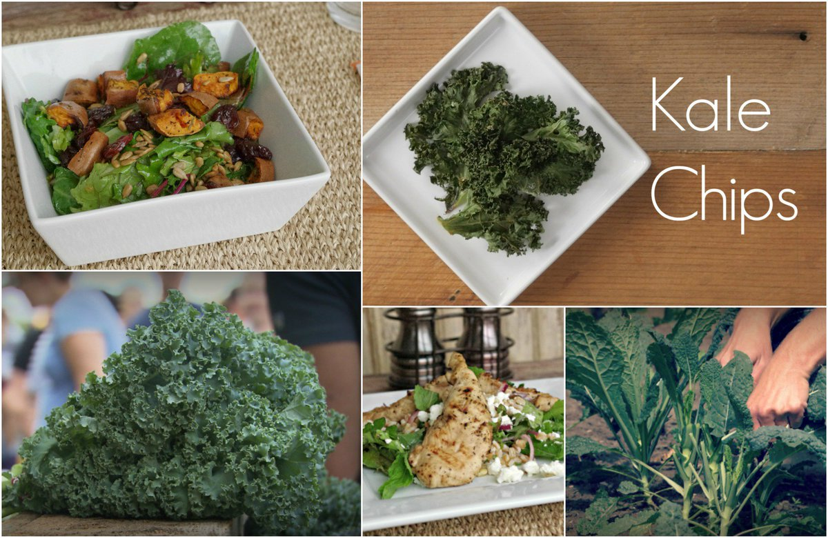 @IowaIngredient: A fun collection of tips and recipes for Kale: https://t.co/y9nuQOmWsP https://t.co/yW3ujsEjJr
