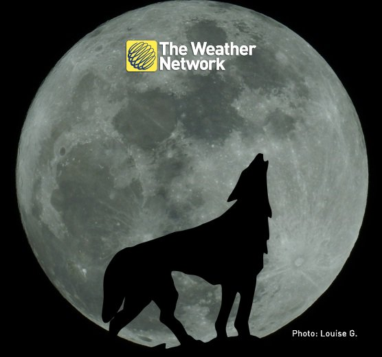 A Full #WolfMoon shines tonight. Here's the best time to see it: https://t.co/3TCMJ7gzqV #NightSkyThisWeek