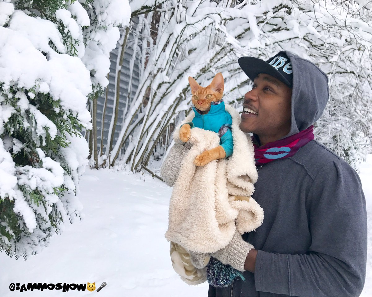 #WhenSpringArrives umm spring... imma need you to step aside right meow. We got winter wonderland happening  <br>http://pic.twitter.com/YBle4wyeL0
