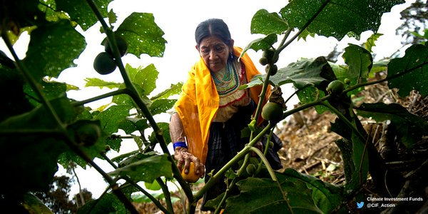 #ICYMI: Gender inequality in times of #climate change is a matter of life and death  http:// wrld.bg/8lk0307Q0fG  &nbsp;  <br>http://pic.twitter.com/aAzHVfr7rt