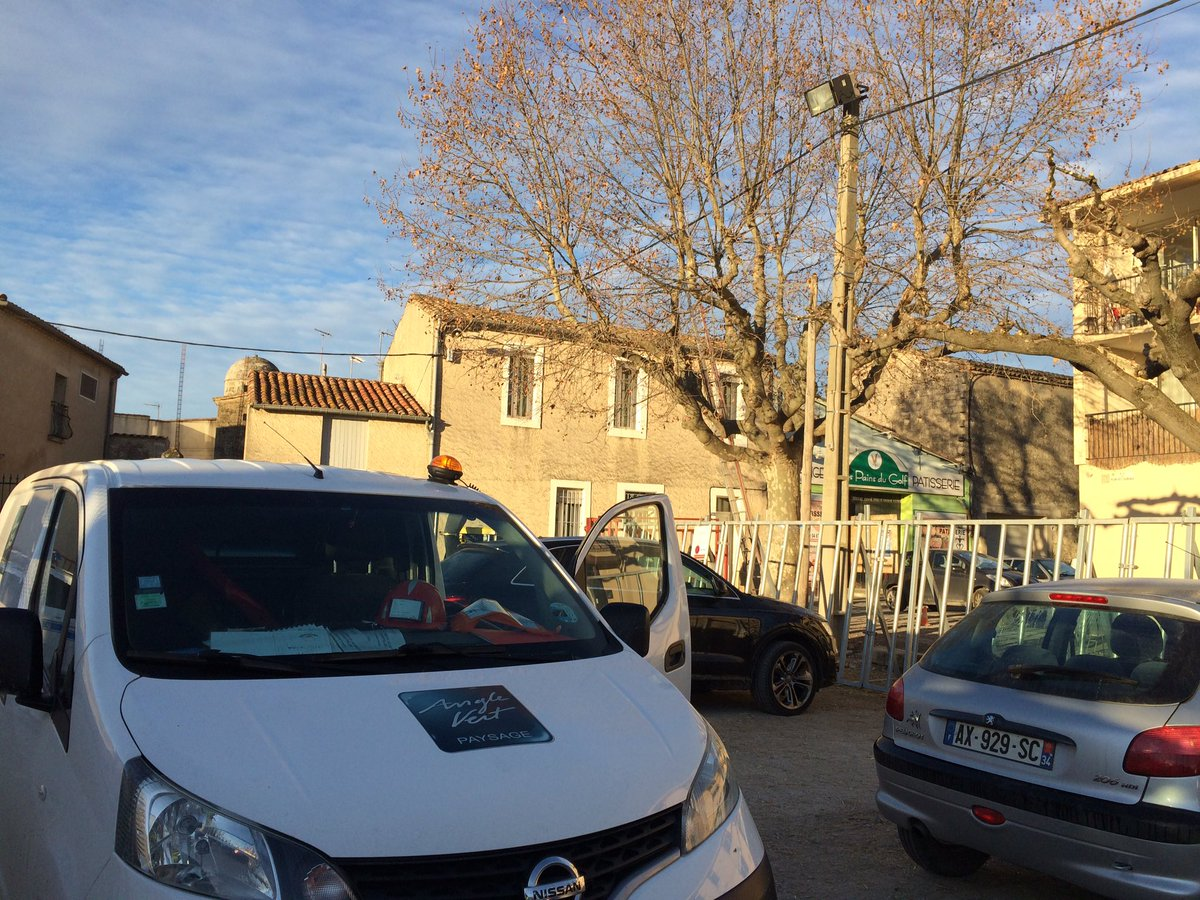 #Taille de #formation du #platane des arènes en partenariat avec l&#39;entreprise d&#39;élagage #BEAD<br>http://pic.twitter.com/FcZiBWEbXL