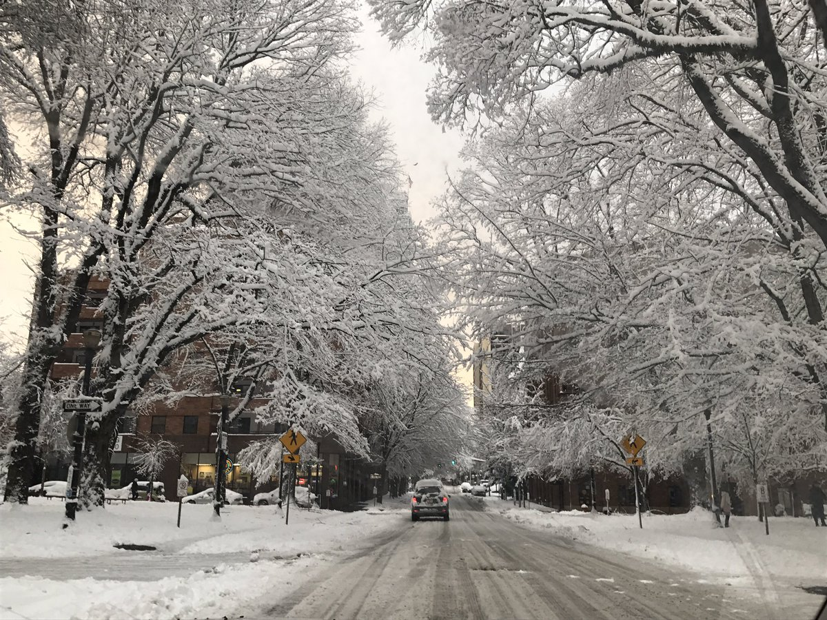 Gorgeous scene in downtown #PDXSnowpocalypse @fox12oregon<br>http://pic.twitter.com/s32Npiwzh0