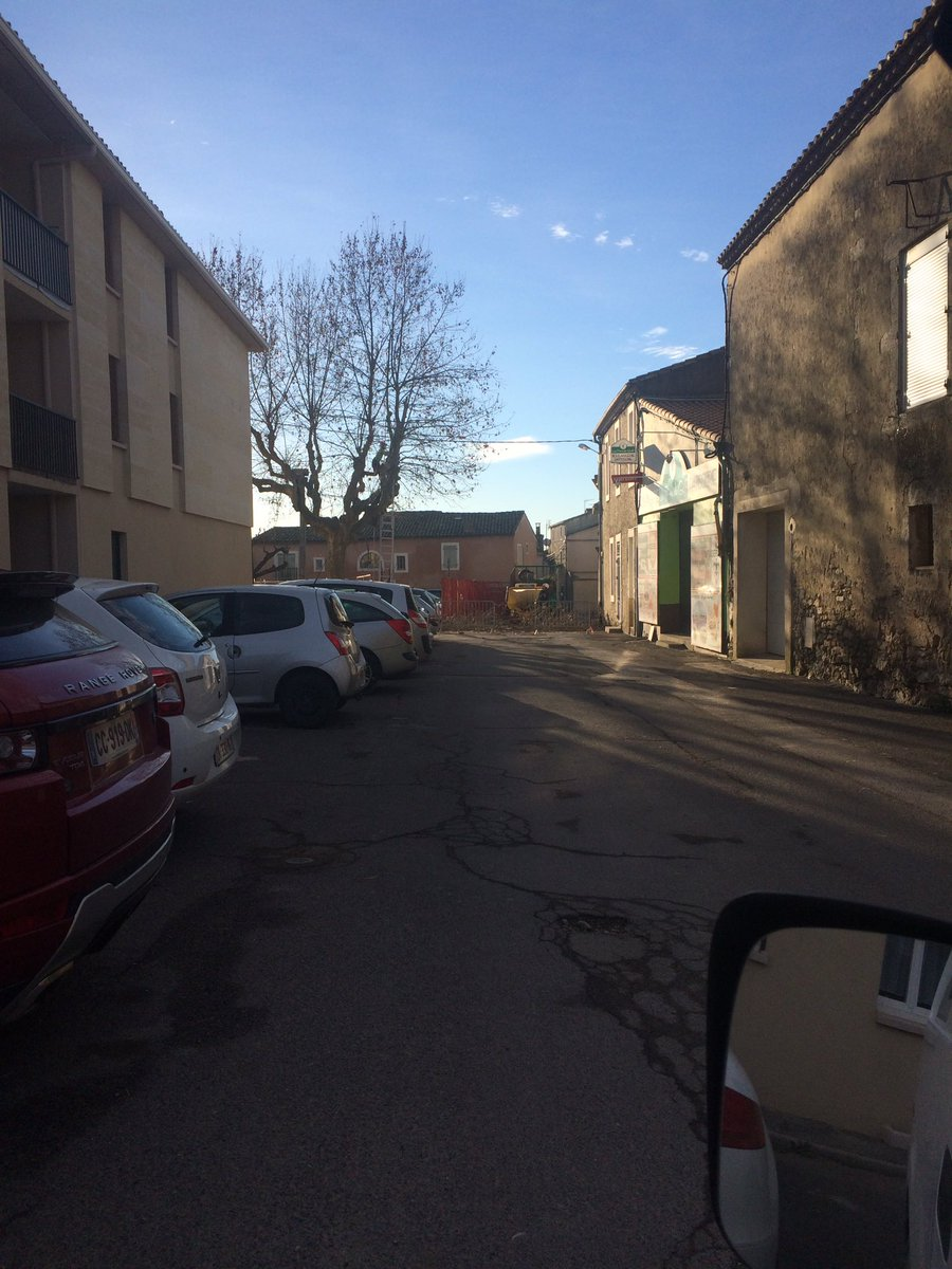 #Taille en #tête de chat du #platane des arènes de #baillargues<br>http://pic.twitter.com/l5WmLSo6CI