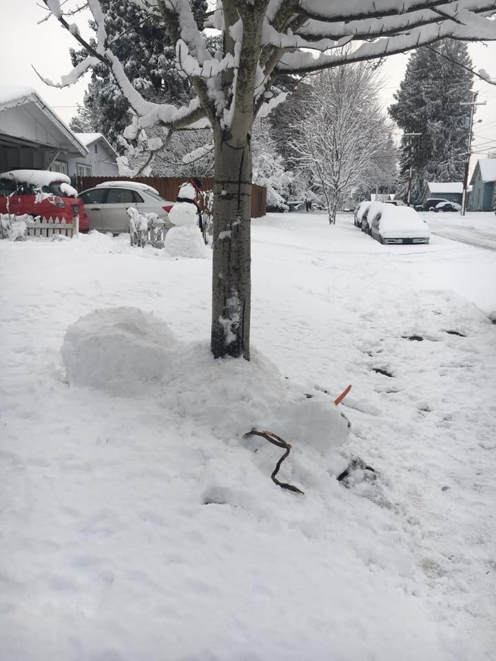 Snow tragedy today on Filbert Street. I&#39;m sure the @ForestGrovePD are investigating.  #PDXSnowpocalypse #pdxsnow #PDX #oregon<br>http://pic.twitter.com/MjpLIbwNh6