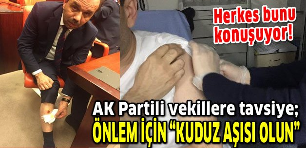 AK Partili vekiller önlem için 'lütfen kuduz aşısı olun' https://t.co/...