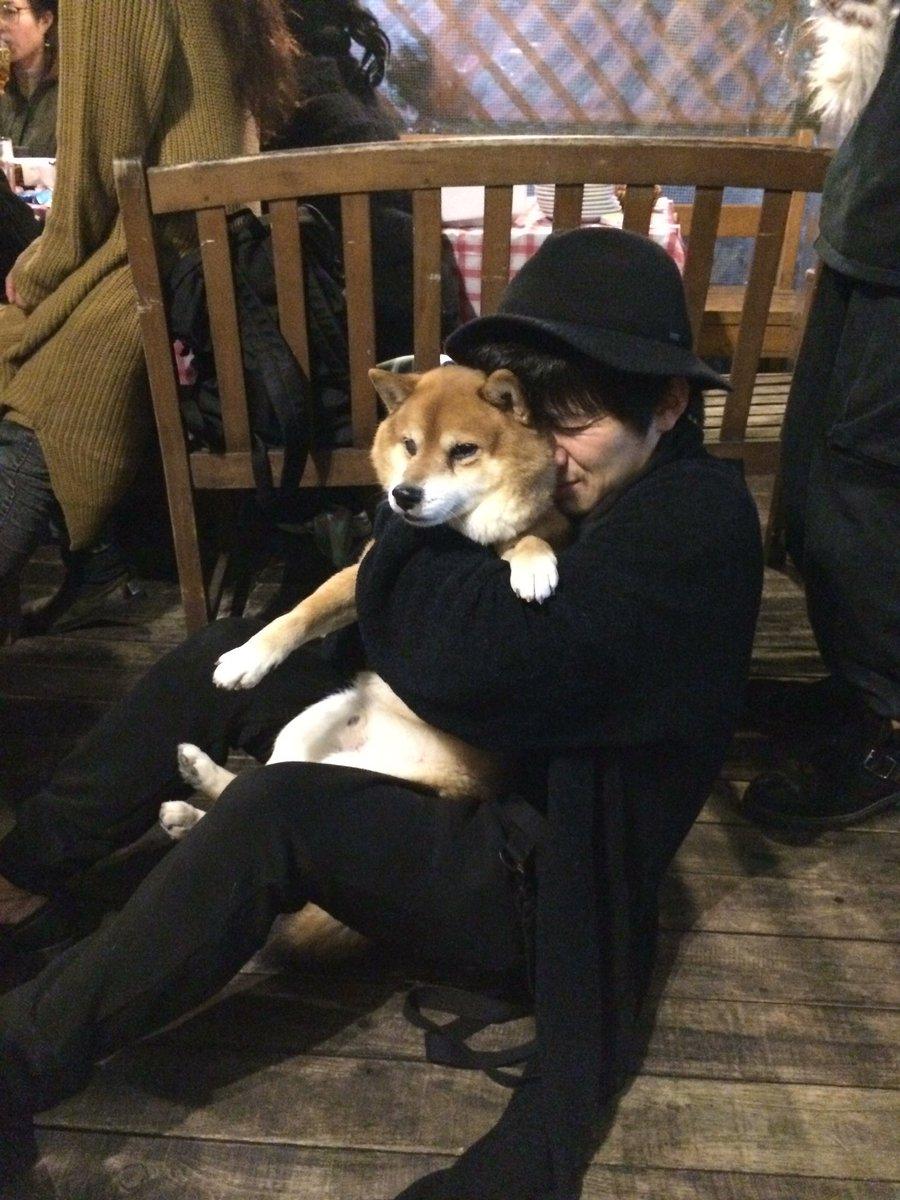 犬と和田正人