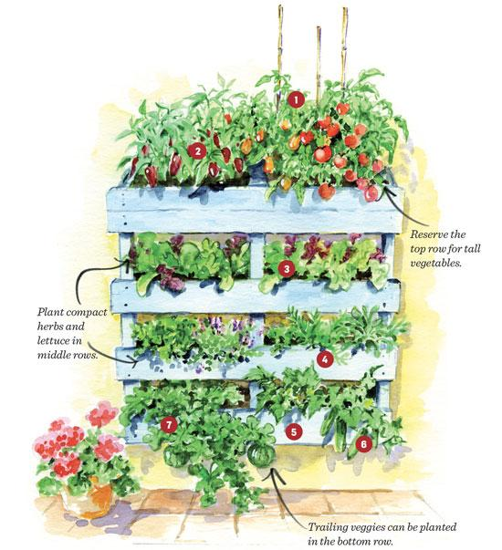 Vertical Pallet Garden Plan