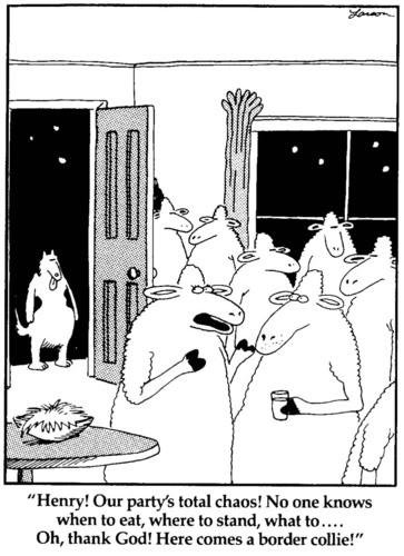 "The last ""The far side"" comic was published on 1/1/95 https://t.co/yV9KJQghzo"