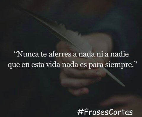 Frases Cortas At Frasescortas819 Twitter