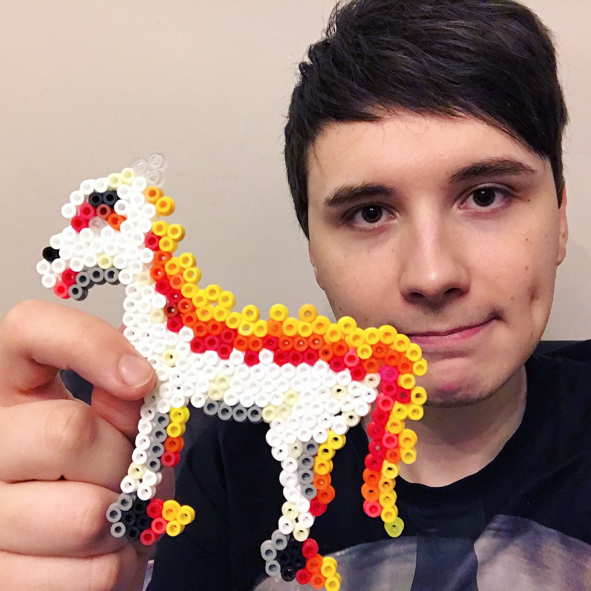 Daniel Howell On Twitter To Everyone Asking If I Went To A Wild